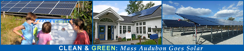 Mass Audubon Solar Portal   Clean & Green: Mass Audubon Goes Solar